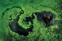 拯救生命之源 直面地下水危机