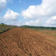 """耕地土壤环境质量堪忧 如何保证""""舌尖上的安全""""?"""
