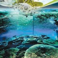 """塞尔维亚""""人工珊瑚站""""拯救生态防海啸两不误"""
