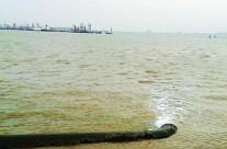 """我国河口海湾环境近八成""""亚健康和不健康"""""""