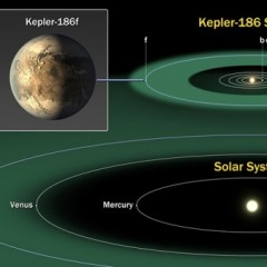 """《科学》:宜居带首次发现地球""""堂兄弟"""""""