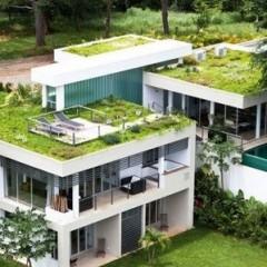城镇绿色建筑:需激发市场主体积极性