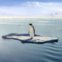 全球变暖在世界各地不均匀