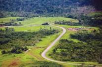 道路建设引发森林变化造成潜在全球性后果