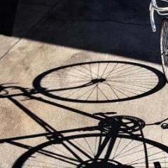 绿色出行正当时 自行车备受推崇