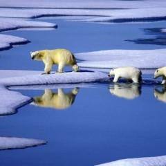 大数据助力气候预报 计算机挑战传统气象学家